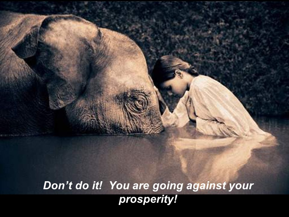 Dont do it! You are going against your prosperity!