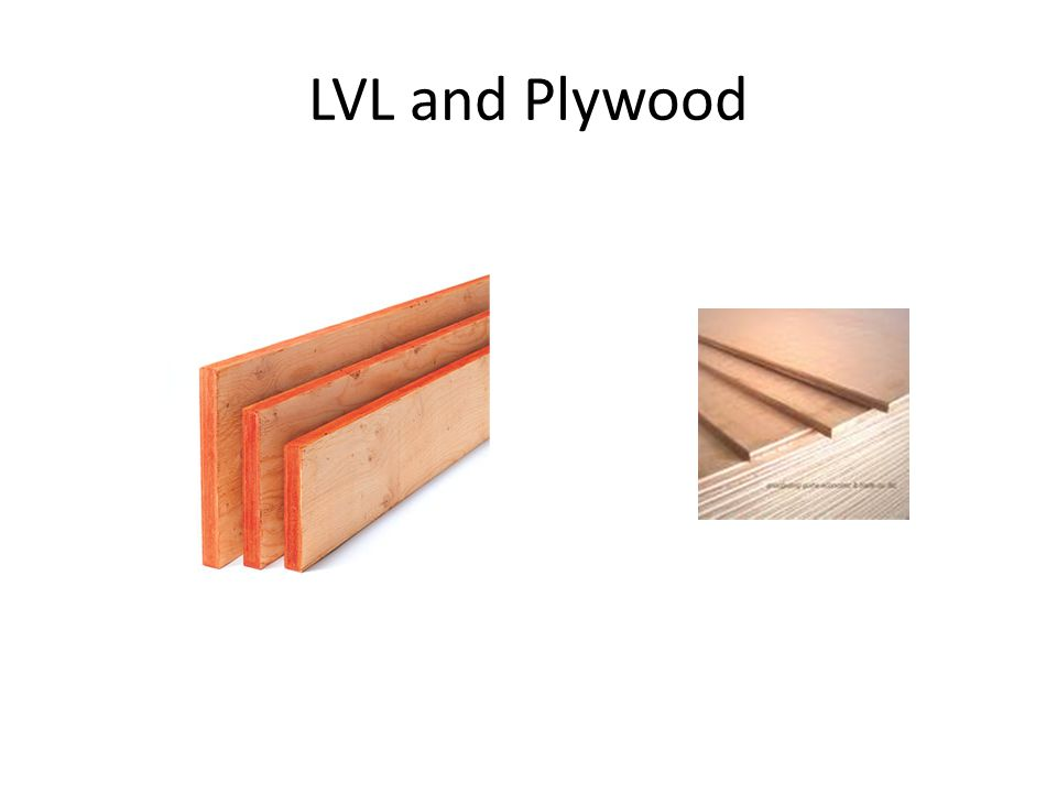 LVL and Plywood