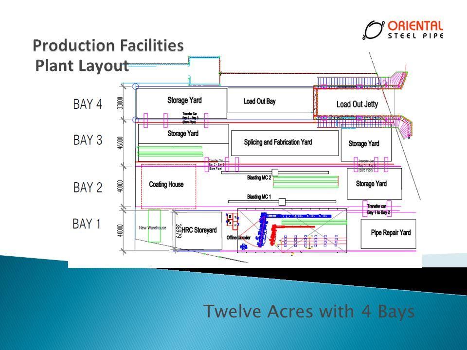 Twelve Acres with 4 Bays Plant Layout