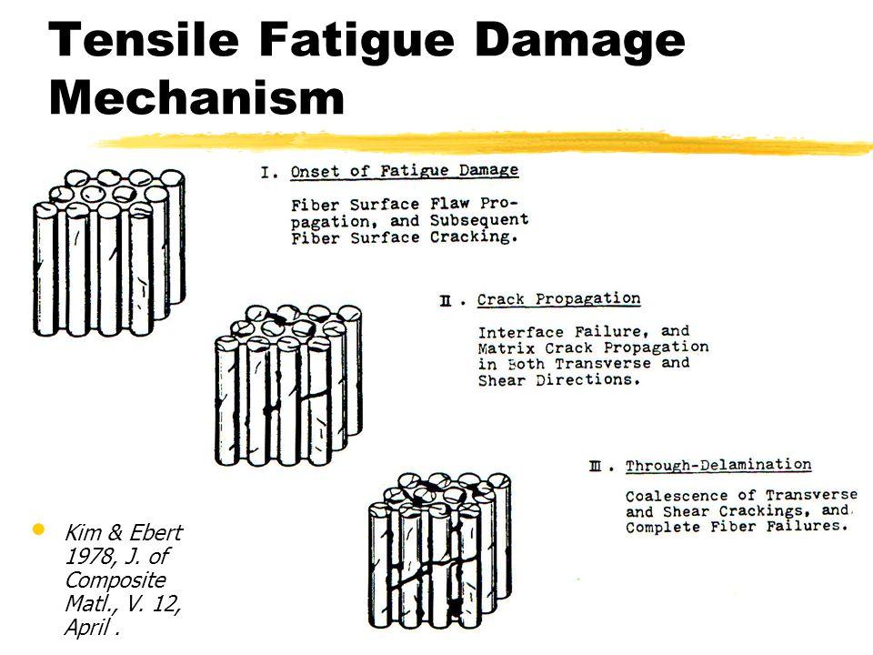 Tensile Fatigue Damage Mechanism Kim & Ebert 1978, J. of Composite Matl., V. 12, April.
