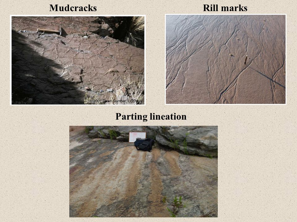 MudcracksRill marks Parting lineation