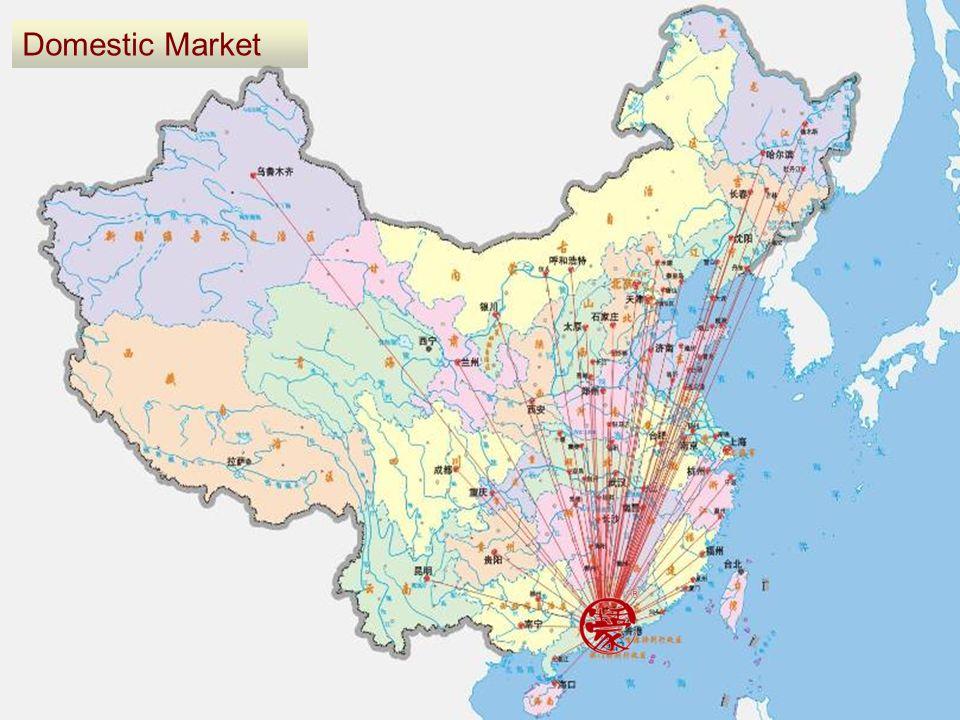 Domestic Market