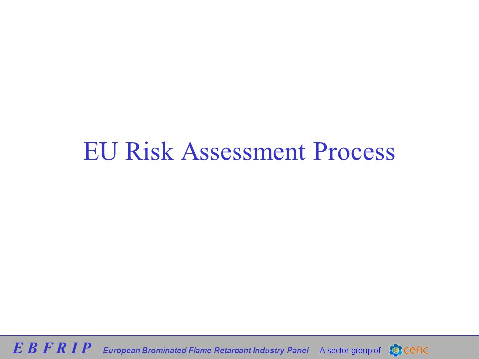 E B F R I P European Brominated Flame Retardant Industry Panel A sector group of EU Risk Assessment Process