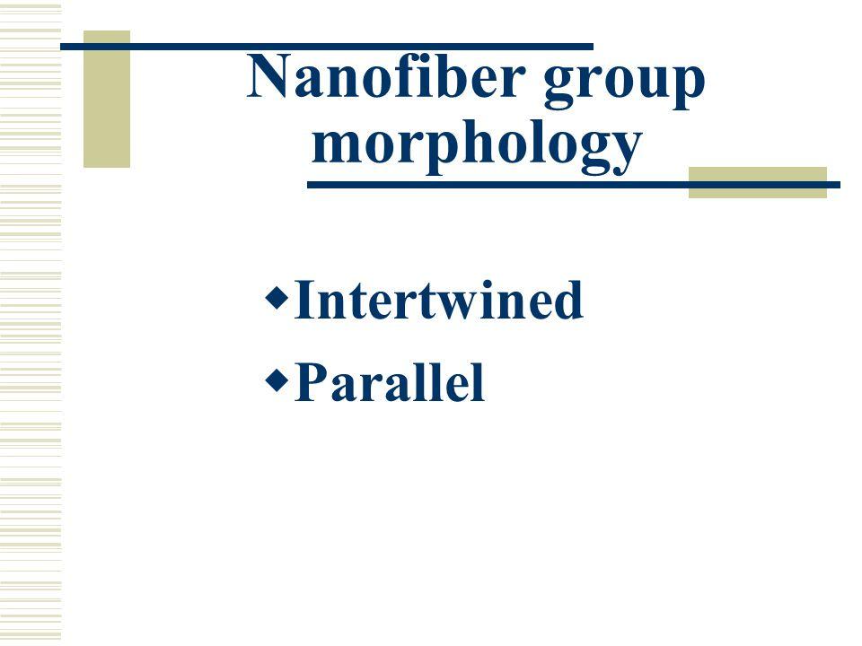 Nanofiber group morphology Intertwined Parallel