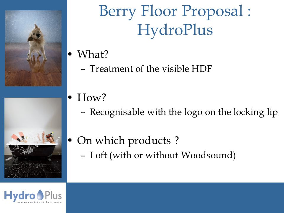 Berry Floor Proposal : HydroPlus What. –Treatment of the visible HDF How.