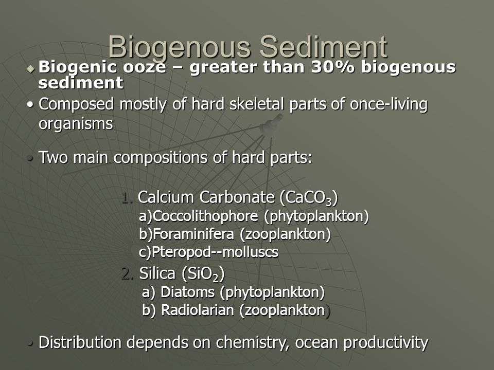 Biogenous Sediment Biogenic ooze – greater than 30% biogenous sediment Biogenic ooze – greater than 30% biogenous sediment Composed mostly of hard skeletal parts of once-living organismsComposed mostly of hard skeletal parts of once-living organisms Two main compositions of hard parts: Two main compositions of hard parts: 1.