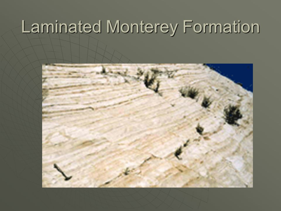Laminated Monterey Formation