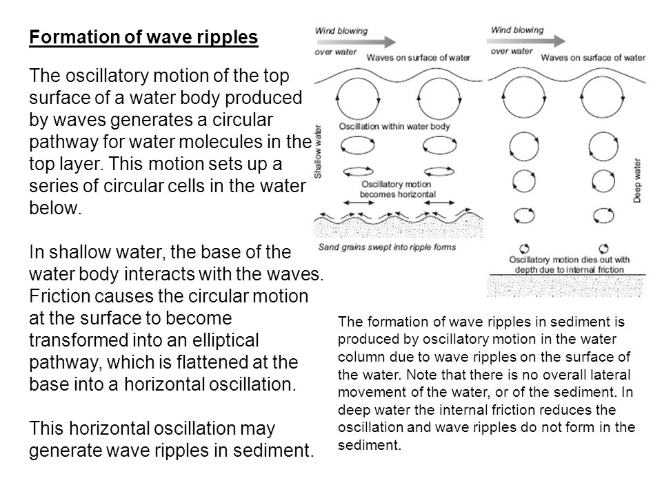 Formation of wave ripples The oscillatory motion of the top surface of a water body produced by waves generates a circular pathway for water molecules