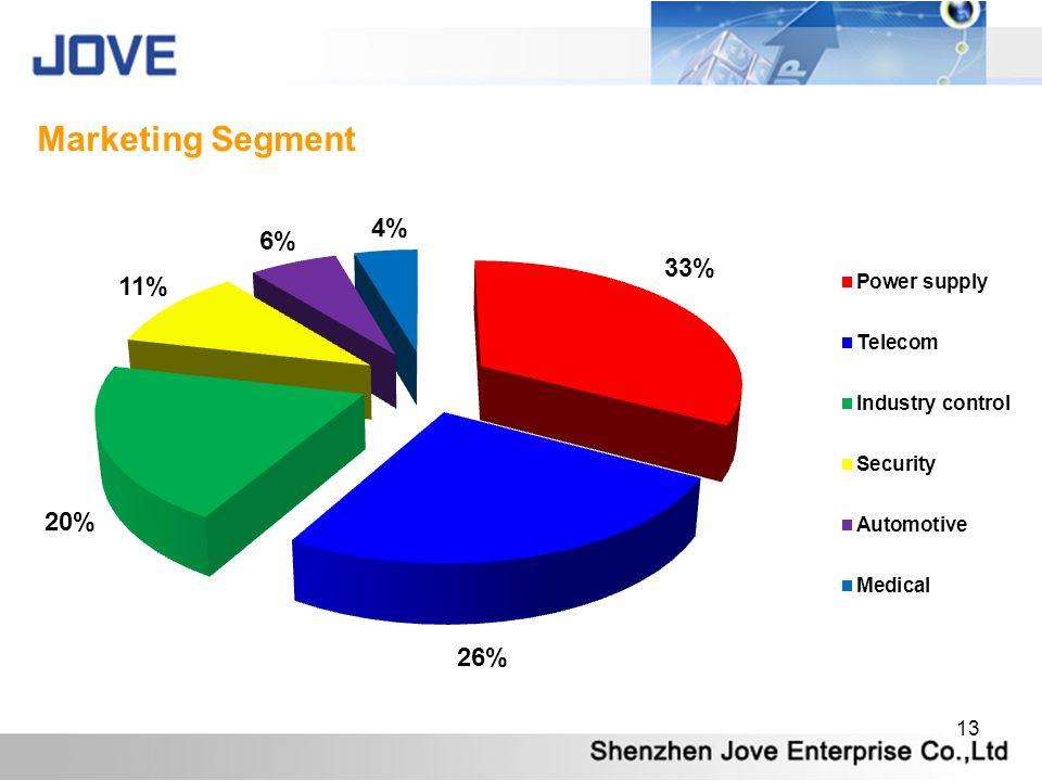 13 Marketing Segment