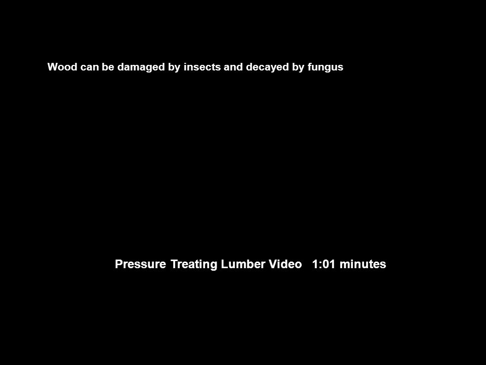 Pressure Treating Lumber Video 1:01 minutes Wood can be damaged by insects and decayed by fungus