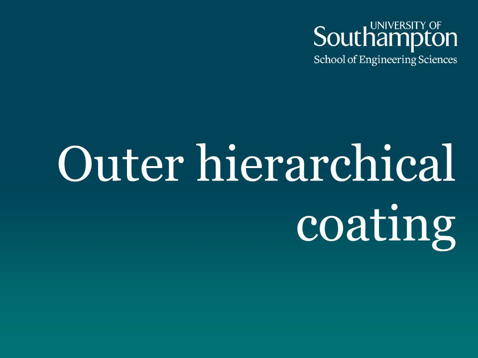 The outer hierarchical coating It is well-known that biological materials present optimized structure and excellent mechanical properties.