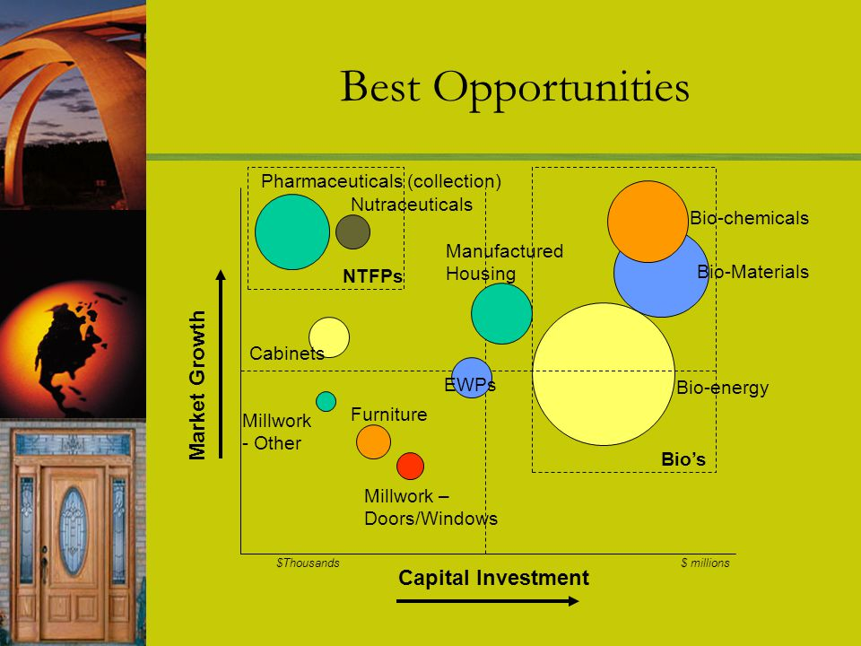 Best Opportunities Capital Investment Market Growth Manufactured Housing Bio-energy Bio-Materials Bio-chemicals EWPs Millwork – Doors/Windows Millwork - Other Nutraceuticals Pharmaceuticals (collection) Cabinets Furniture NTFPs Bios $Thousands $ millions