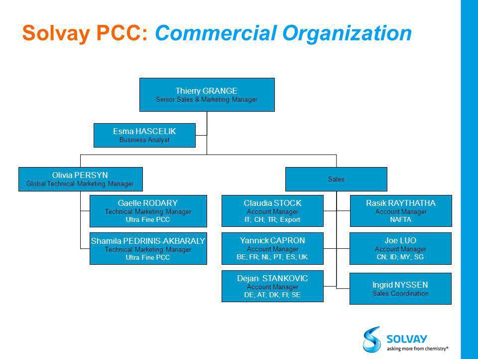 Solvay PCC: Commercial Organization 19 Esma HASCELIK Business Analyst Thierry GRANGE Senior Sales & Marketing Manager Olivia PERSYN Global Technical M