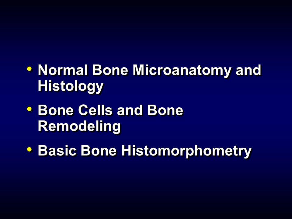 Normal Bone Microanatomy and Histology Normal Bone Microanatomy and Histology Bone Cells and Bone Remodeling Bone Cells and Bone Remodeling Basic Bone