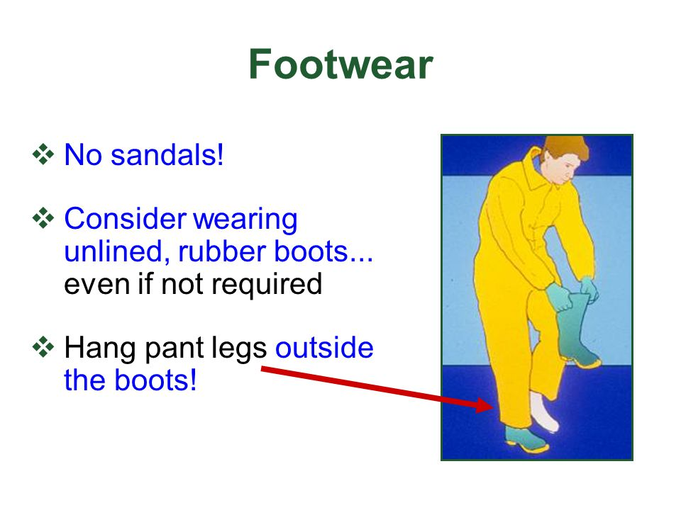Footwear No sandals! Consider wearing unlined, rubber boots... even if not required Hang pant legs outside the boots!