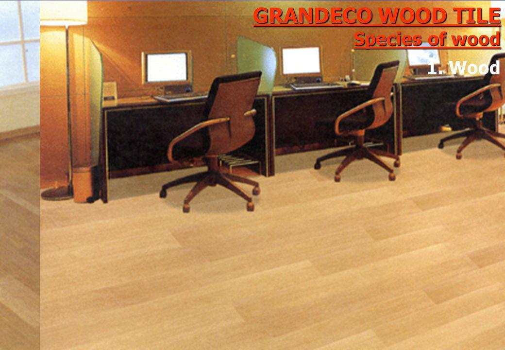 GRANDECO WOOD TILE Species of wood 1. Wood