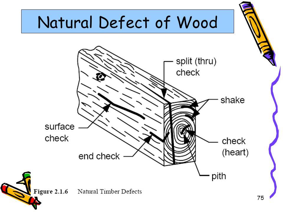 75 Natural Defect of Wood
