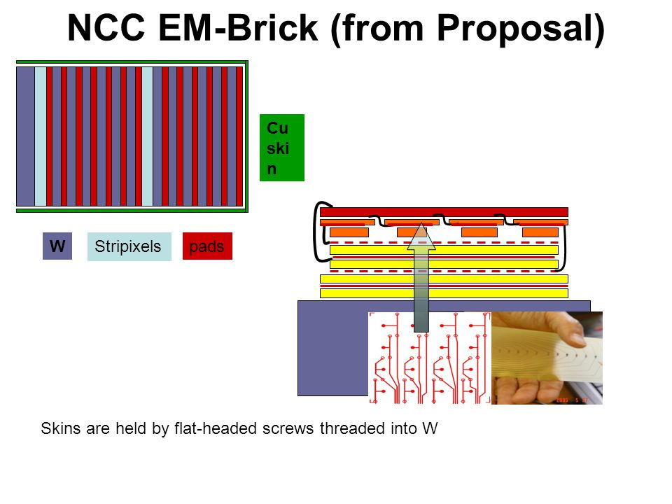 NCC EM-Brick (from Proposal) W Stripixels pads Cu ski n Skins are held by flat-headed screws threaded into W