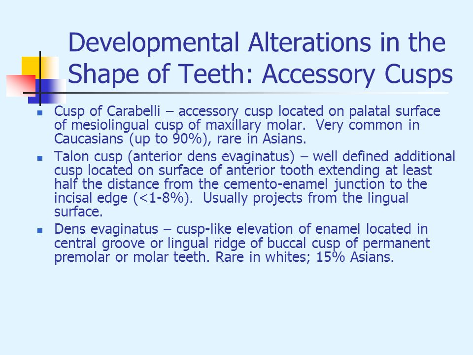 Developmental Alterations in the Shape of Teeth: Accessory Cusps Cusp of Carabelli – accessory cusp located on palatal surface of mesiolingual cusp of
