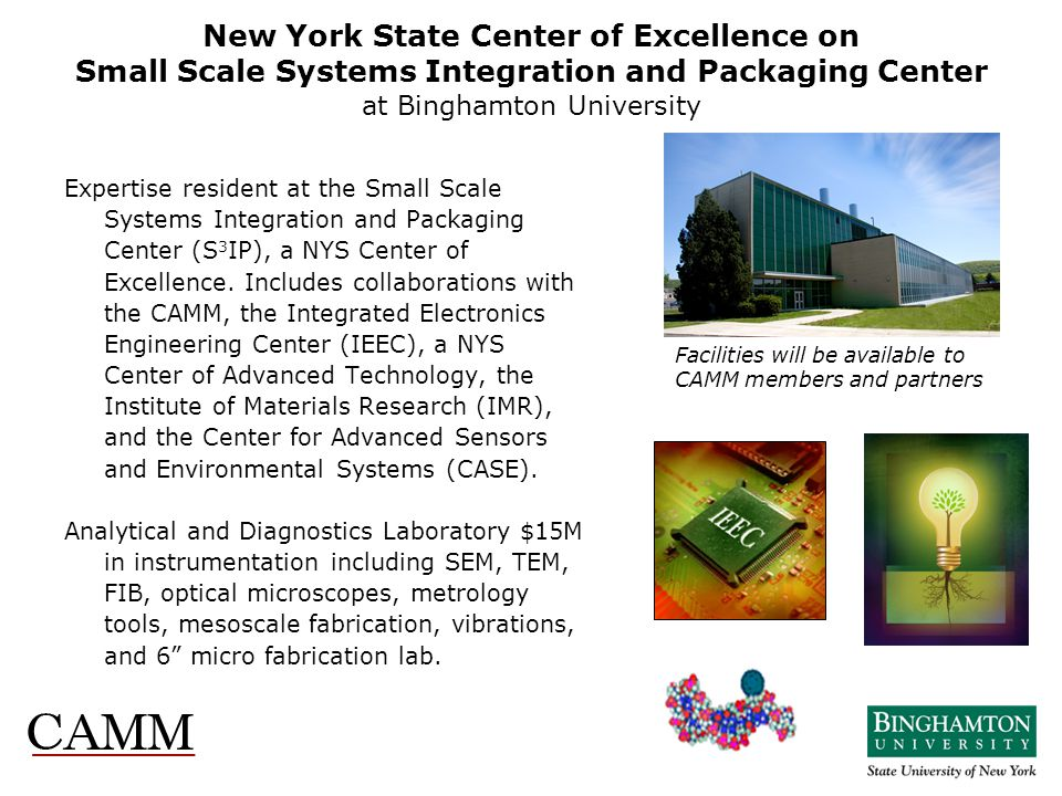 New York State Center of Excellence on Small Scale Systems Integration and Packaging Center at Binghamton University Expertise resident at the Small S