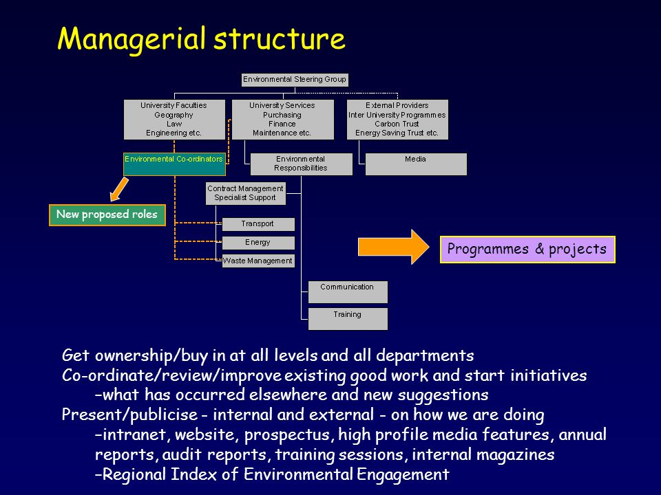 Managerial structure Get ownership/buy in at all levels and all departments Co-ordinate/review/improve existing good work and start initiatives –what