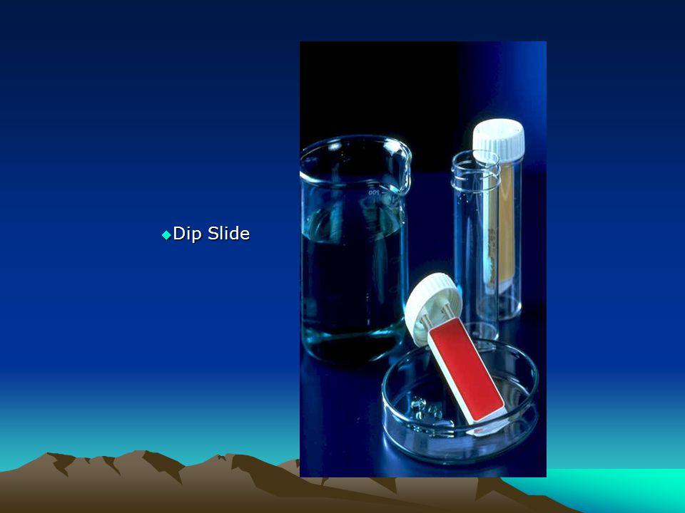 Dip Slide Dip Slide