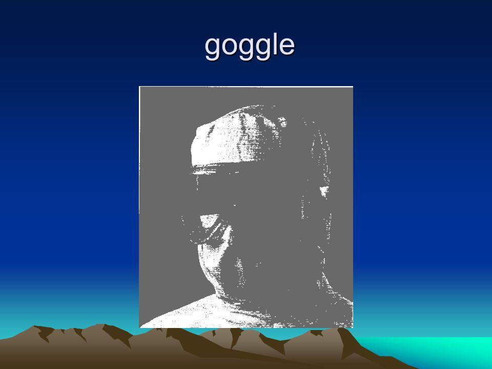 goggle goggle