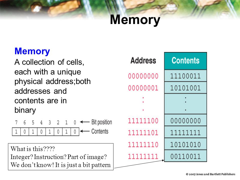 Memory A collection of cells, each with a unique physical address;both addresses and contents are in binary What is this???? Integer? Instruction? Par