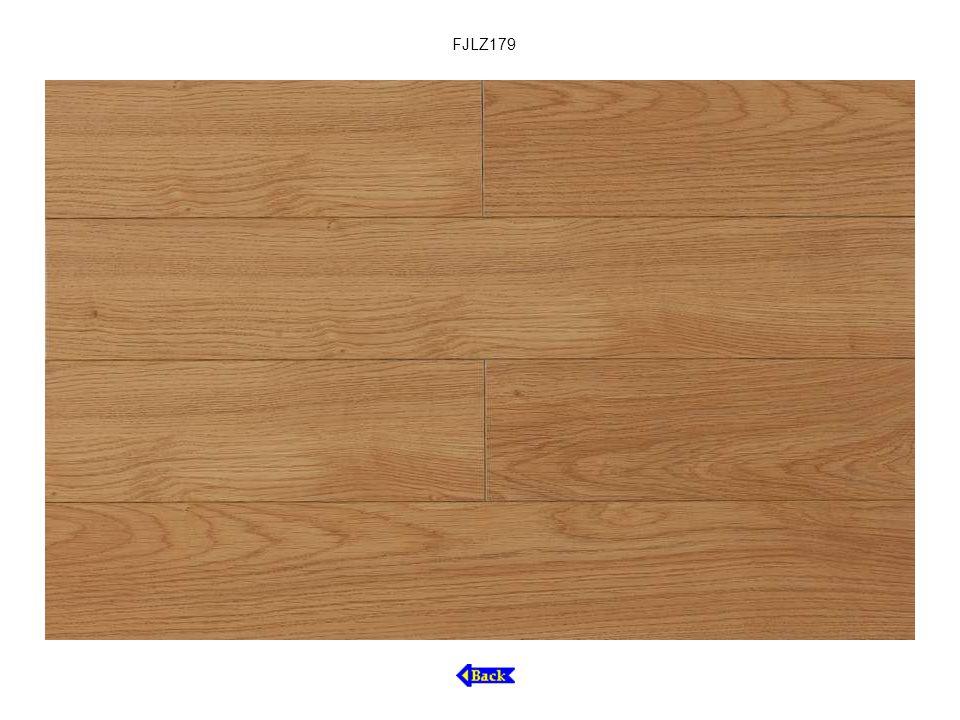 FJLZ179