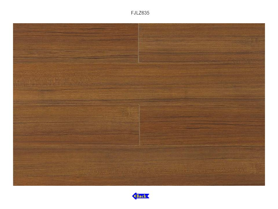 FJLZ635