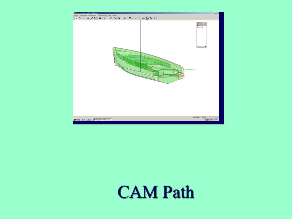 CAM Path