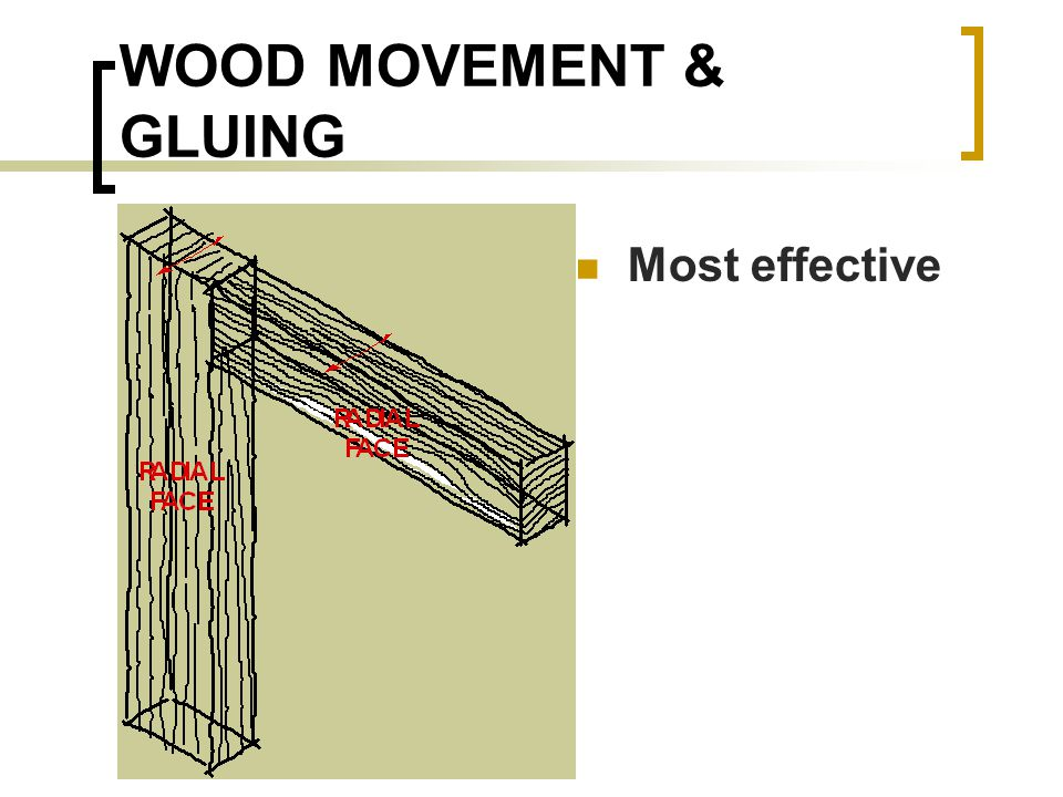 WOOD MOVEMENT & GLUING Most effective