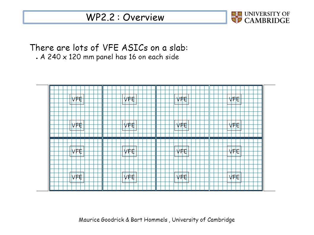 Maurice Goodrick & Bart Hommels, University of Cambridge WP2.2 : Overview There are lots of VFE ASICs on a slab: A 240 x 120 mm panel has 16 on each side