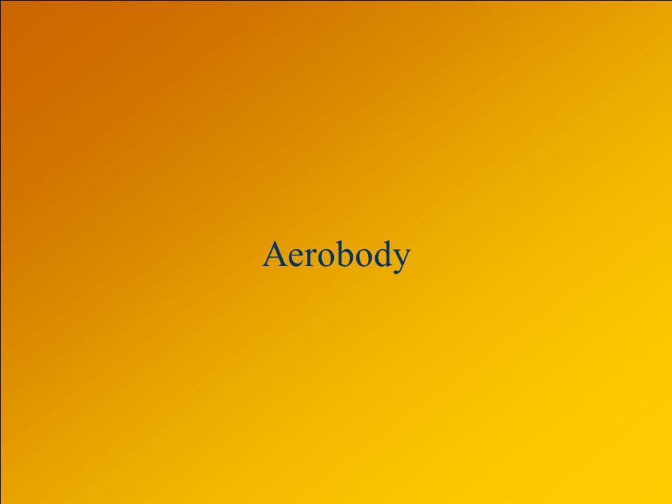 Aerobody