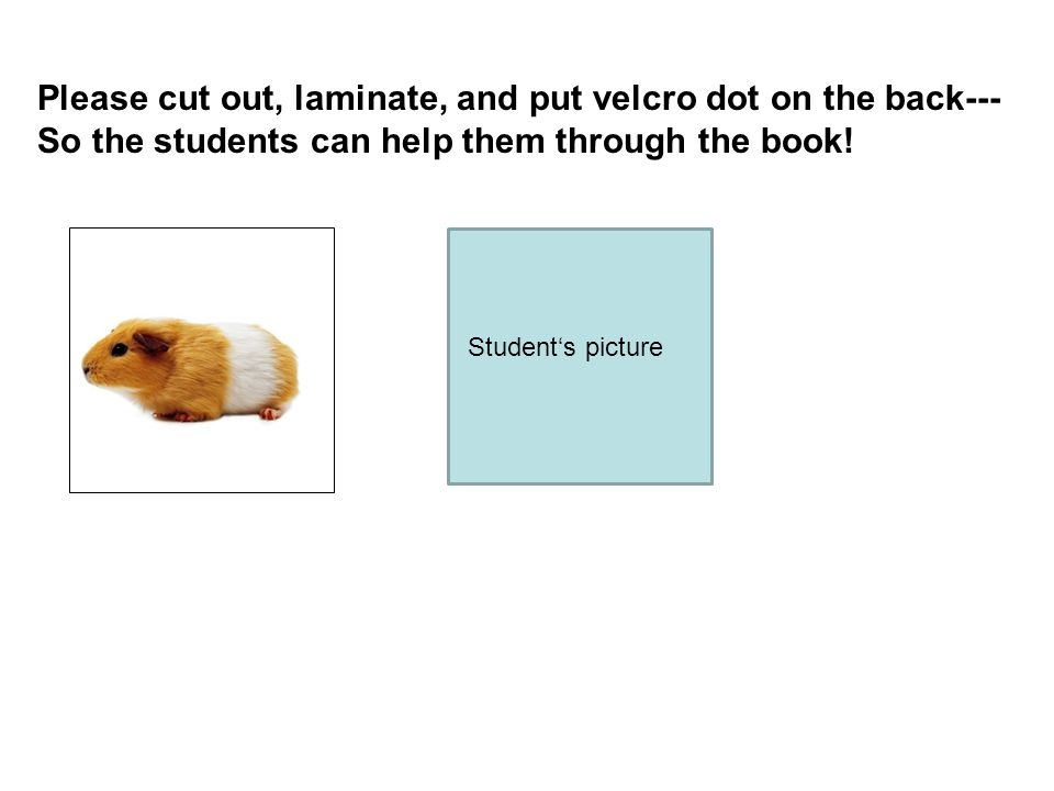 Please cut out, laminate, and put velcro dot on the back--- So the students can help them through the book! Students picture