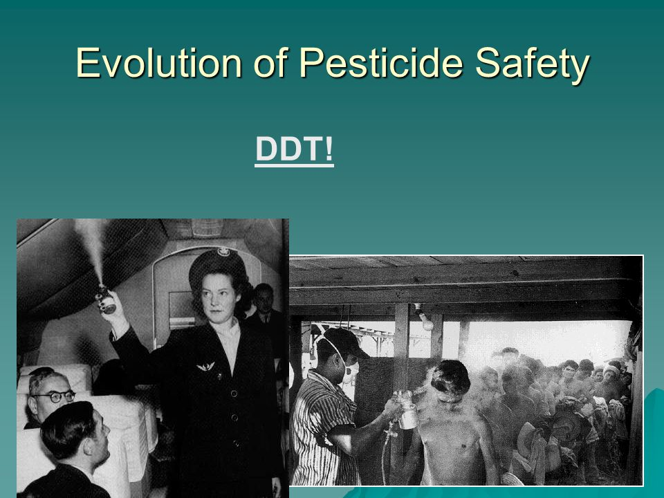 Evolution of Pesticide Safety DDT!