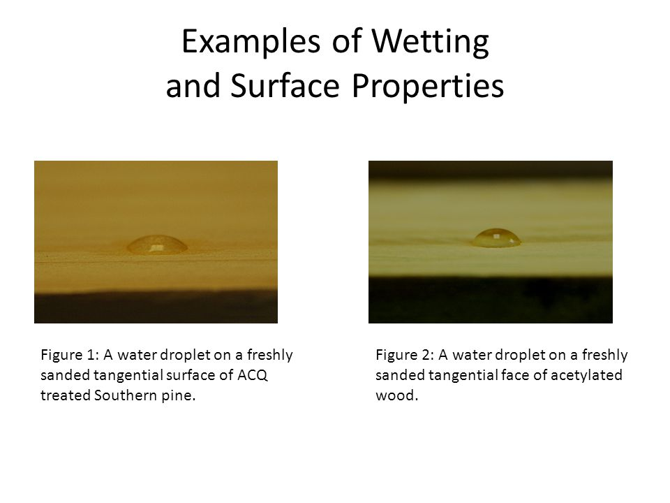 Examples of Wetting and Surface Properties Figure 1: A water droplet on a freshly sanded tangential surface of ACQ treated Southern pine. Figure 2: A