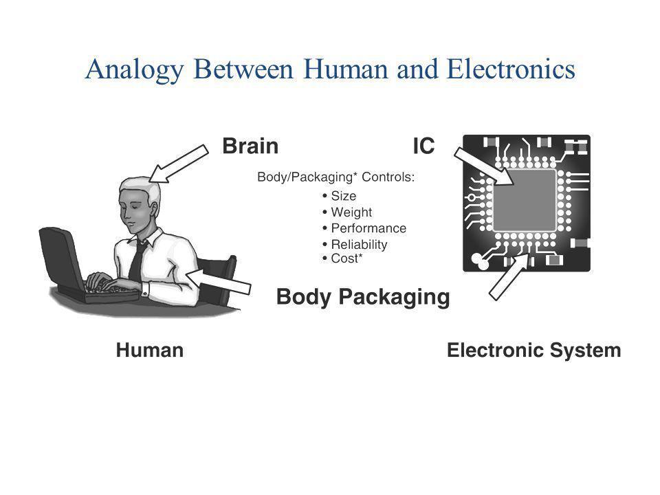 Analogy Between Human and Electronics