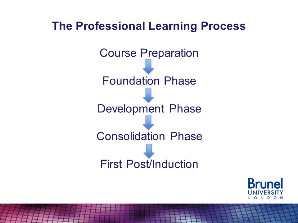 The Professional Learning Process Identified Professional Learning Needs (Foundation Initial Needs Analysis or Development/Consolidation Action Plan) Professional Learning Activities and Timetable Weekly Professional Learning Targets (Weekly Professional Learning Record: Meeting) Weekly Professional Learning: teaching/other activities (*Lesson Feedback Record and Professional Learning Activities) Interim profile Weekly Professional Learning: teaching/other activities* End of Phase Profile