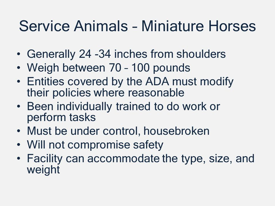 Service Animals – Miniature Horses Generally inches from shoulders Weigh between 70 – 100 pounds Entities covered by the ADA must modify their policies where reasonable Been individually trained to do work or perform tasks Must be under control, housebroken Will not compromise safety Facility can accommodate the type, size, and weight