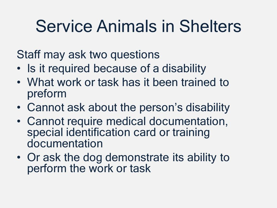 Service Animals in Shelters Staff may ask two questions Is it required because of a disability What work or task has it been trained to preform Cannot ask about the persons disability Cannot require medical documentation, special identification card or training documentation Or ask the dog demonstrate its ability to perform the work or task