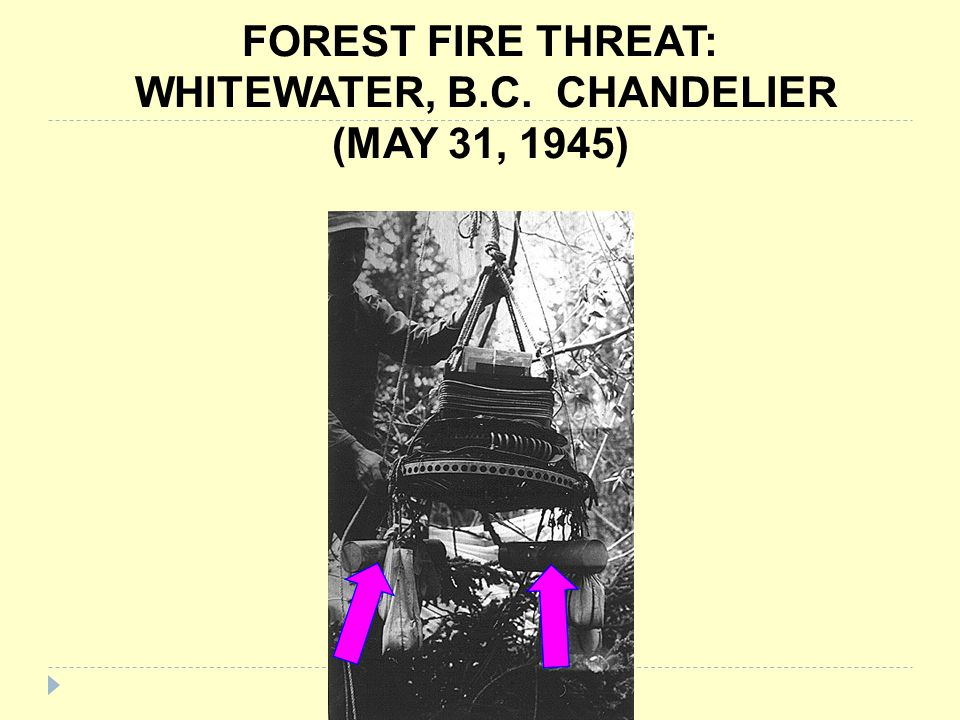 FOREST FIRE THREAT: WHITEWATER, B.C. CHANDELIER (MAY 31, 1945)