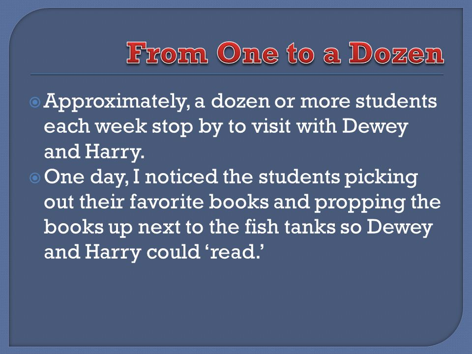 Approximately, a dozen or more students each week stop by to visit with Dewey and Harry.