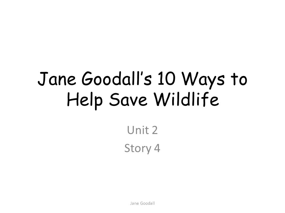 conservation contribute environment investigation enthusiastic Jane Goodall Teacher Slide 1: