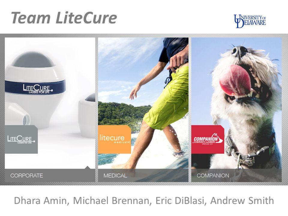 Dhara Amin, Michael Brennan, Eric DiBlasi, Andrew Smith Team LiteCure