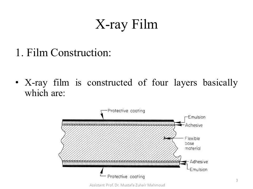 X-ray Film 1. Film Construction: X-ray film is constructed of four layers basically which are: 3 Assistant Prof. Dr. Mustafa Zuhair Mahmoud