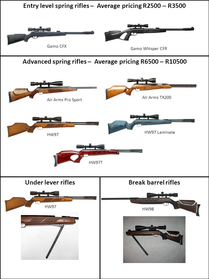 Gamo Whisper CFR Entry level spring rifles – Average pricing R2500 – R3500 Advanced spring rifles – Average pricing R6500 – R10500 Gamo CFX Air Arms P