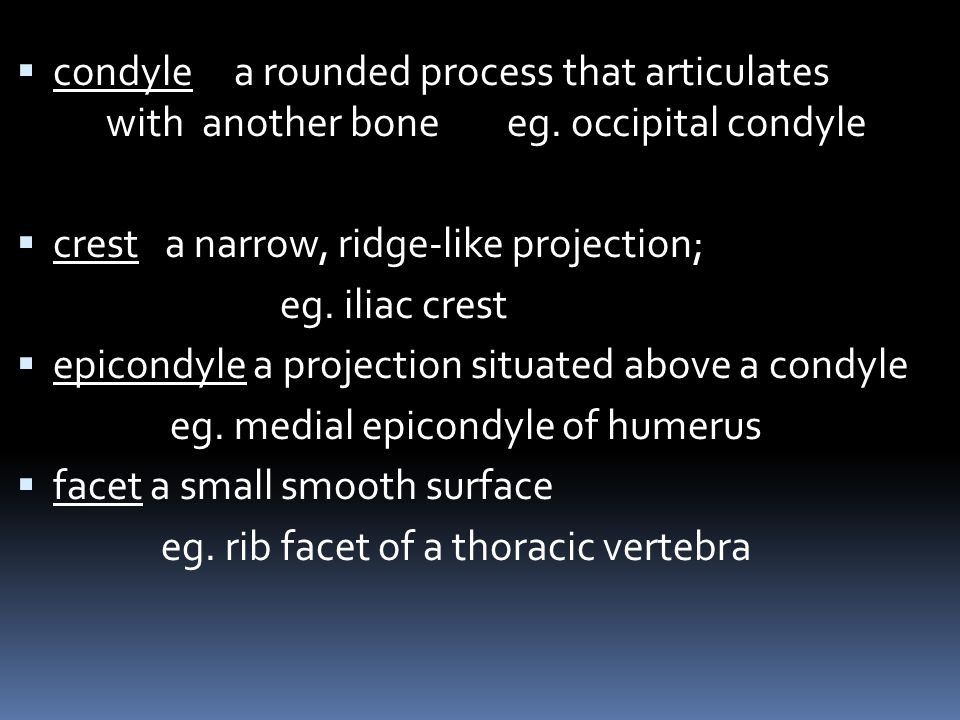 condyle a rounded process that articulates with another bone eg. occipital condyle crest a narrow, ridge-like projection; eg. iliac crest epicondyle a