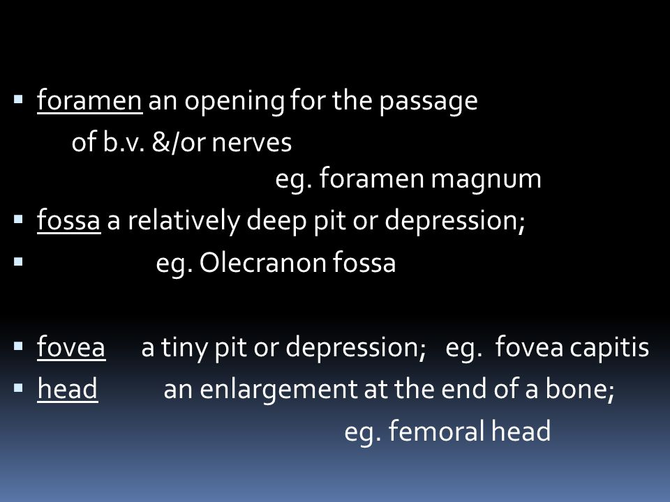 foramen an opening for the passage of b.v. &/or nerves eg. foramen magnum fossa a relatively deep pit or depression; eg. Olecranon fossa fovea a tiny