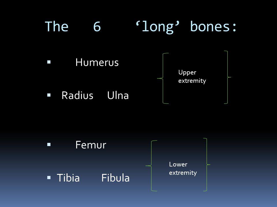 foramen an opening for the passage of b.v.&/or nerves eg.